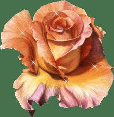Fleur (10)