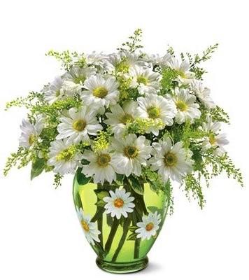 Fleur (13)