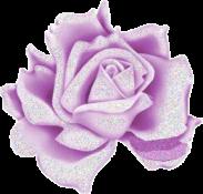 Fleur (3)