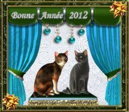 Bonne Année 2012 (4)