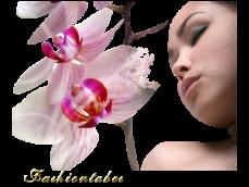 Orchidée (23)