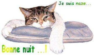 Gif Bonne Nuit (4)