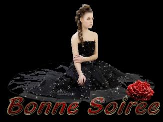 Gif Bonsoir, Bonne Soirée (3)