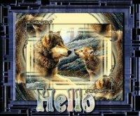 Gif Hello (12)