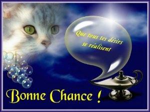 Gif Bonne Chance (4)
