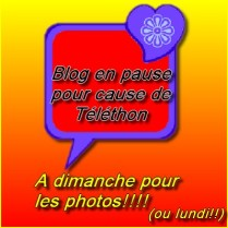 GifBlog en Pause (17)