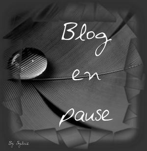 GifBlog en Pause (7)