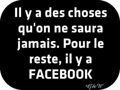 Les Panneaux Facebook  Panneau-60