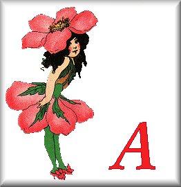 Gif Alphabet Fleurs 010 (1)