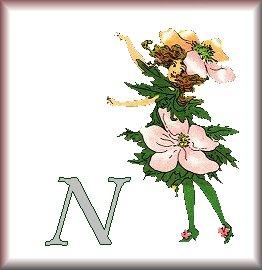 Gif Alphabet Fleurs 010 (14)
