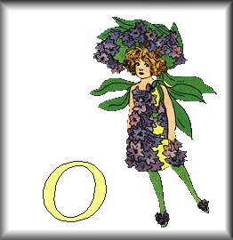 Gif Alphabet Fleurs 010 (15)