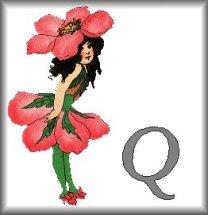 Gif Alphabet Fleurs 010 (17)
