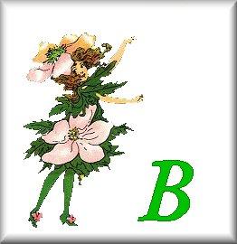 Gif Alphabet Fleurs 010 (2)