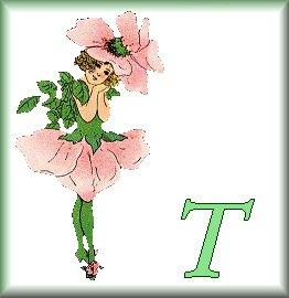 Gif Alphabet Fleurs 010 (20)