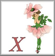 Gif Alphabet Fleurs 010 (24)