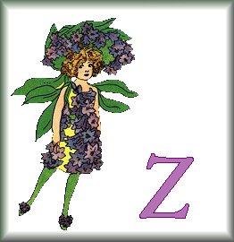 Gif Alphabet Fleurs 010 (26)