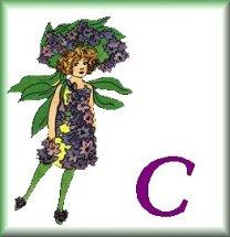 Gif Alphabet Fleurs 010 (3)