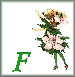 Gif Alphabet Fleurs 010 (6)