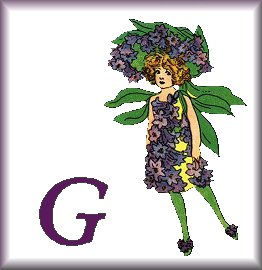 Gif Alphabet Fleurs 010 (7)