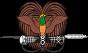 Gif Drapeau Papouasie-Guinée (1)