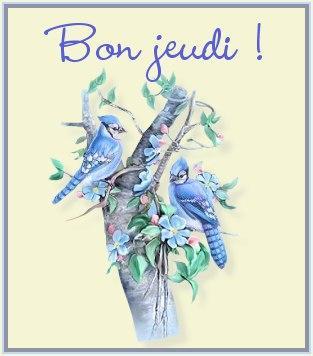 Gif Bon Jeudi (4)