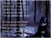 Gif Amour (1)