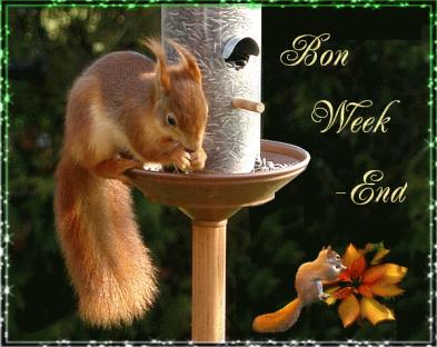 Bon Week-End (127)